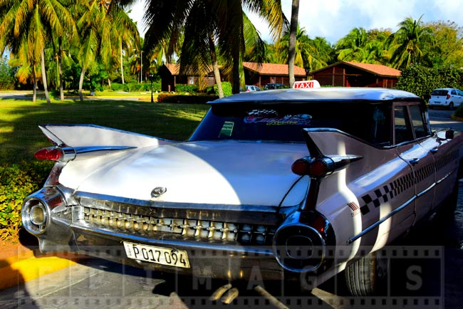 Cadillac Eldorado 1959 tail fins and lights