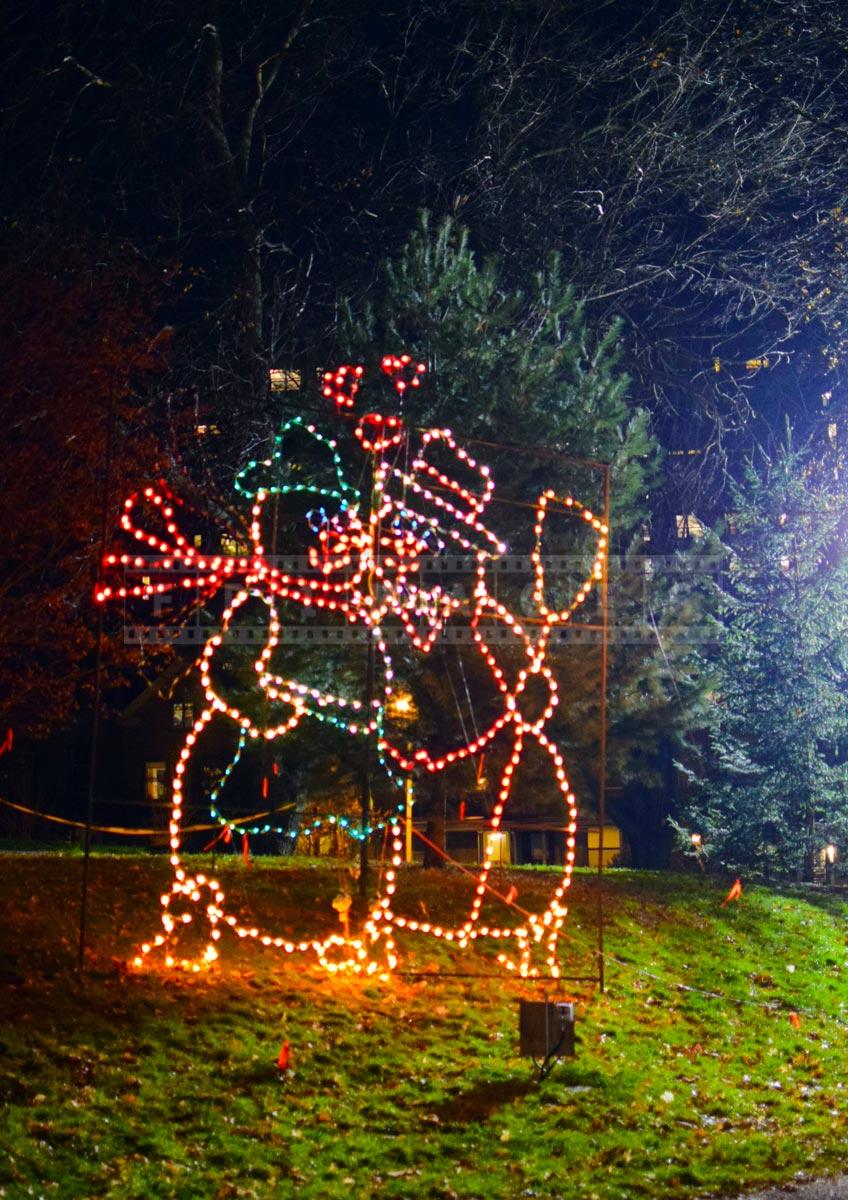 Albany Christmas lights display