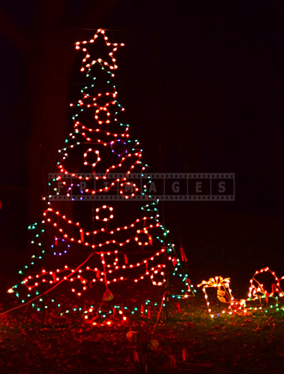 Albany, NY Christmas Tree made with Lights