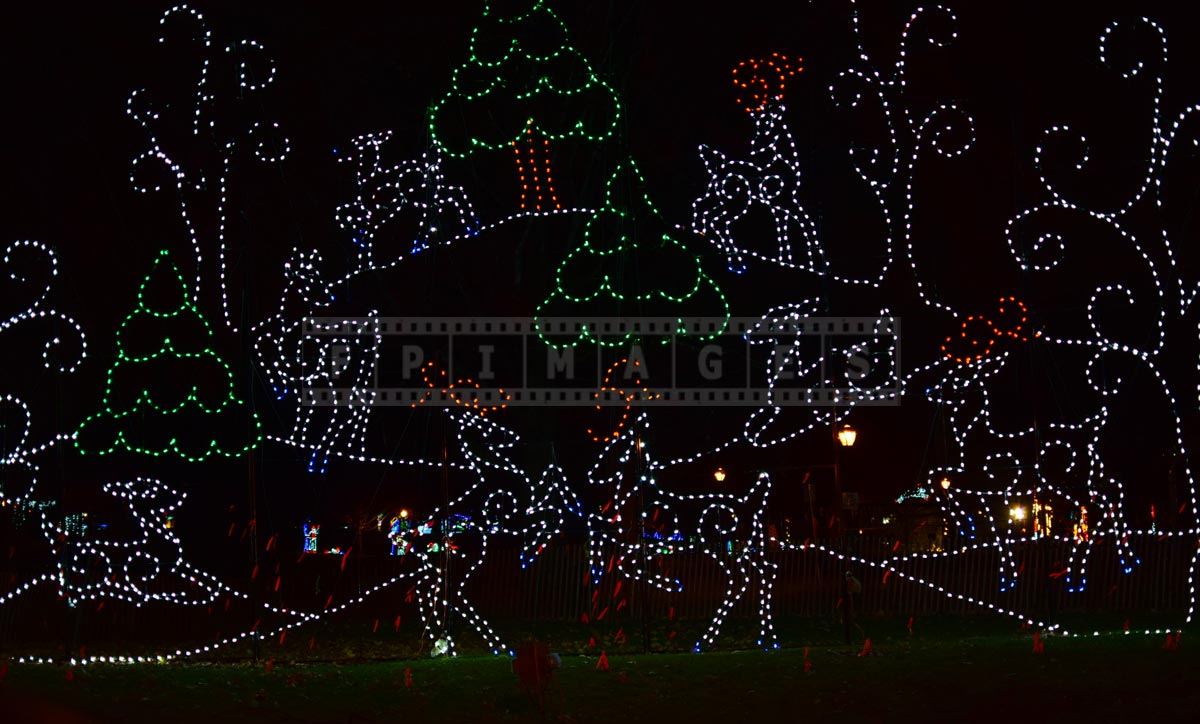 Reindeer xmas lights