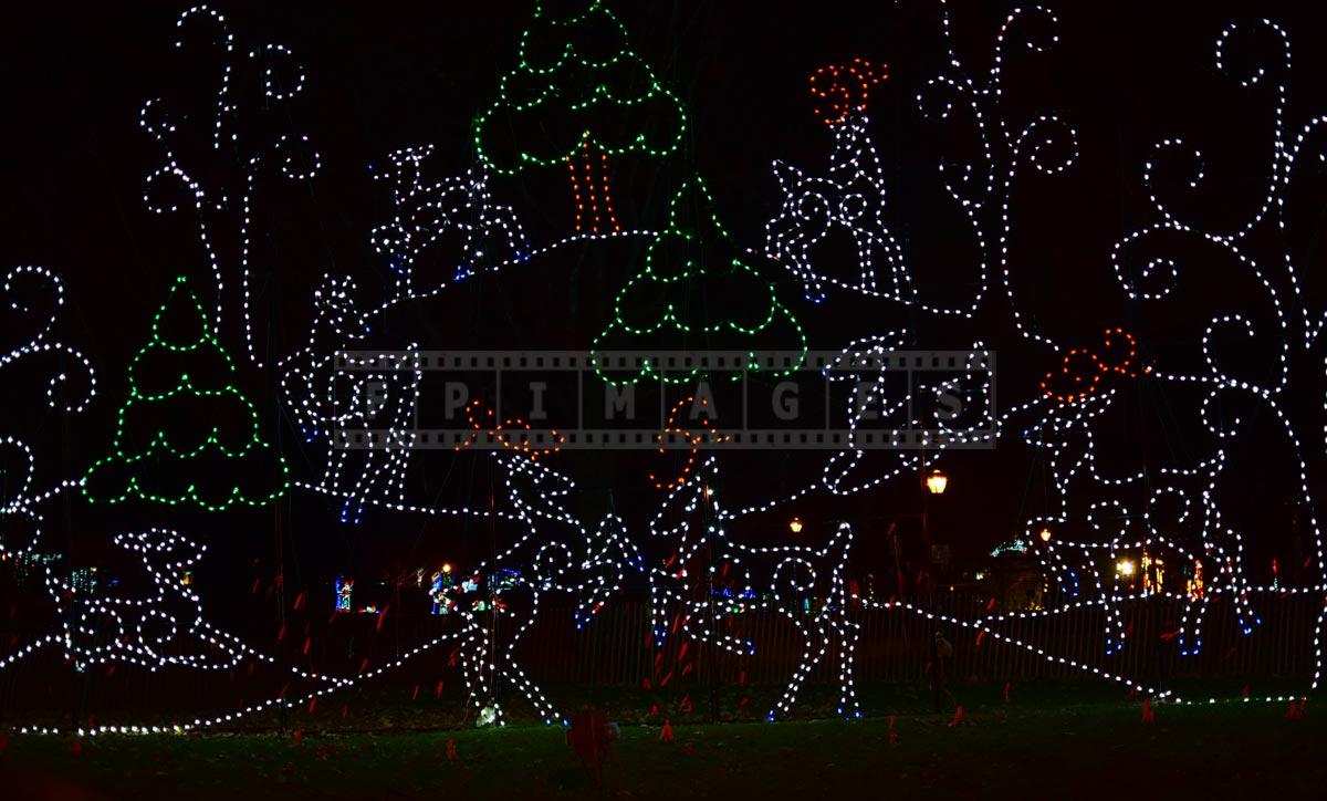 Reindeer xmas lights