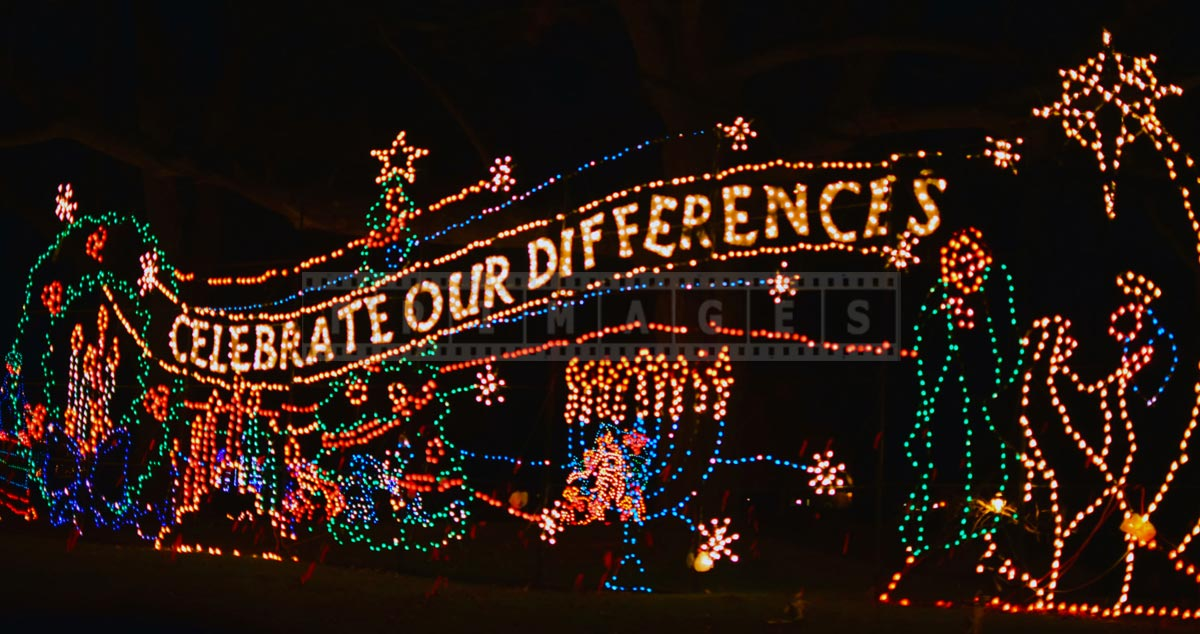 Celebrate our differences - holiday season xmas lights message