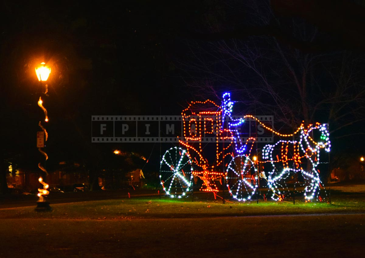 Romantic night scene from holiday lights in the park