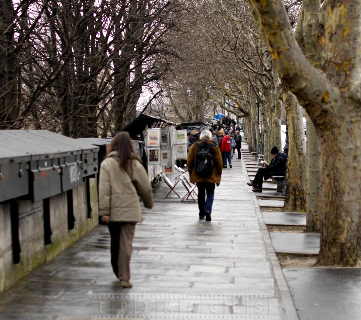 Charming walk by the Seine along antique booksellers