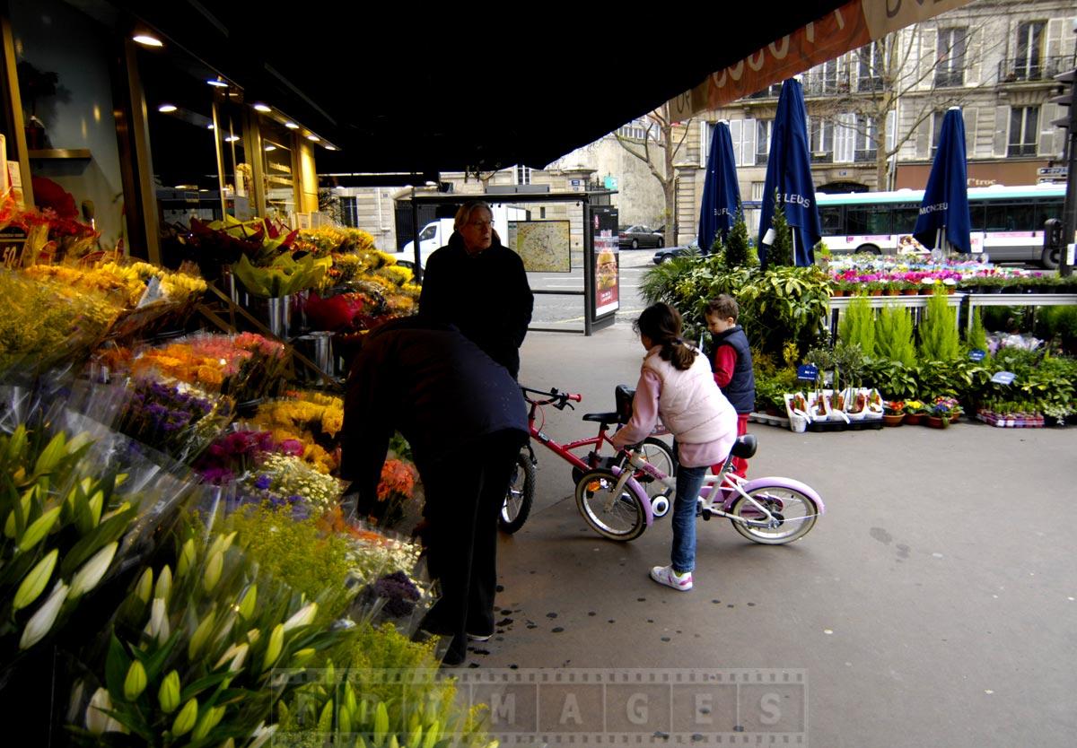 Fresh flower shop in Paris