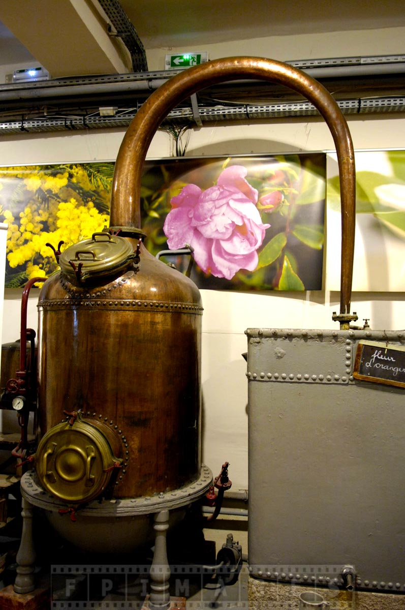 Perfume distilling machine extracts natural orange flower oils
