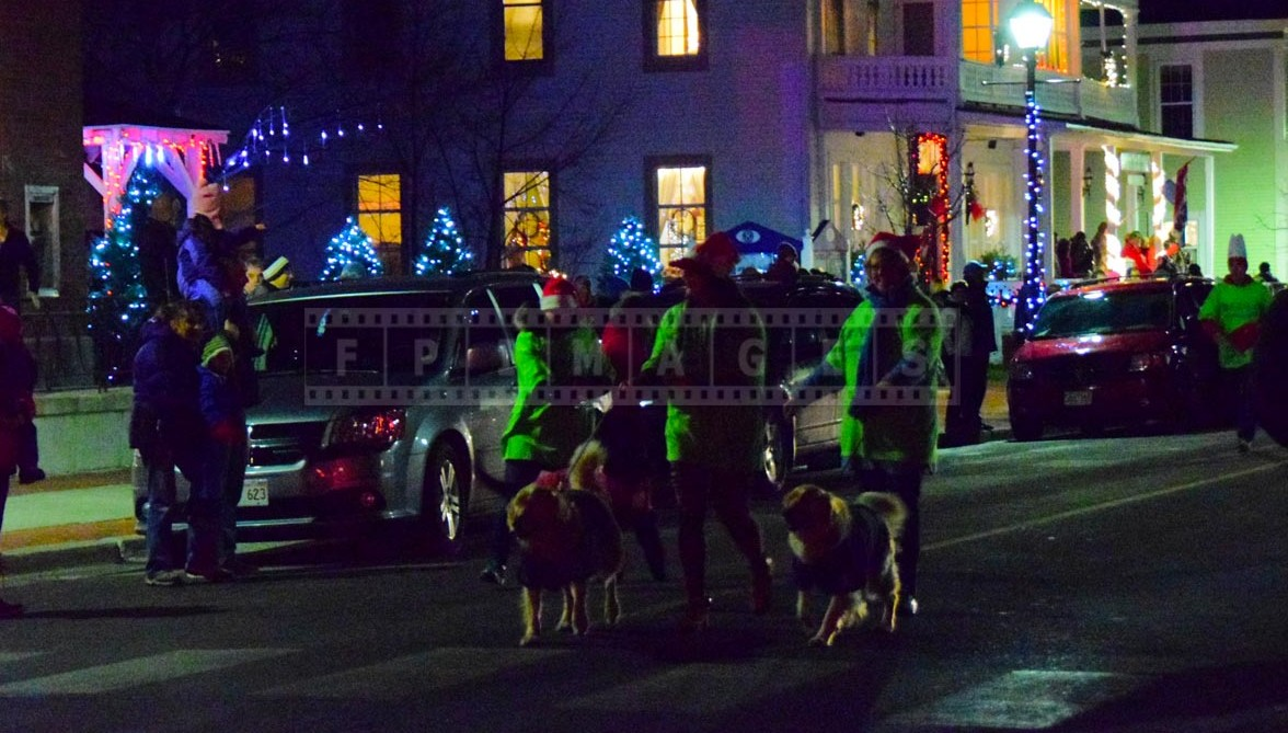 Dogs dressed up for Christmas parade