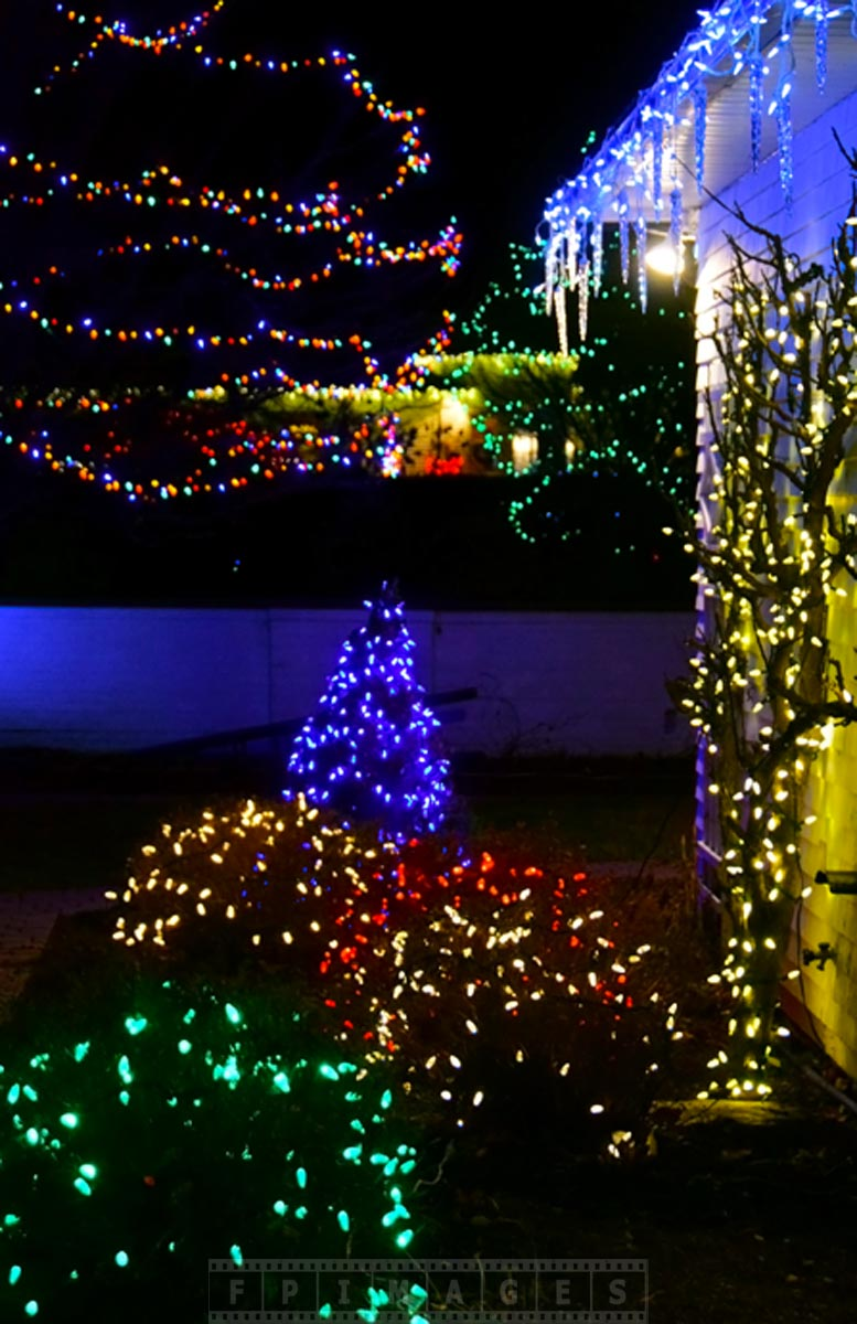 Bright Christmas lights display at the entrance to Kingsbrae garden