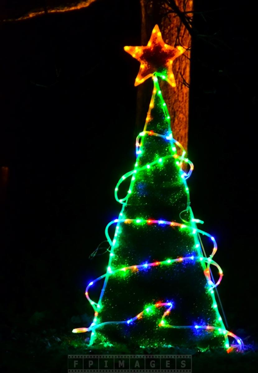 Christmas tree - Kingsbrae Garden
