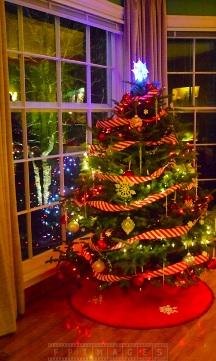 Kingsbrae Garden cafe Xmas Tree with holiday decorations