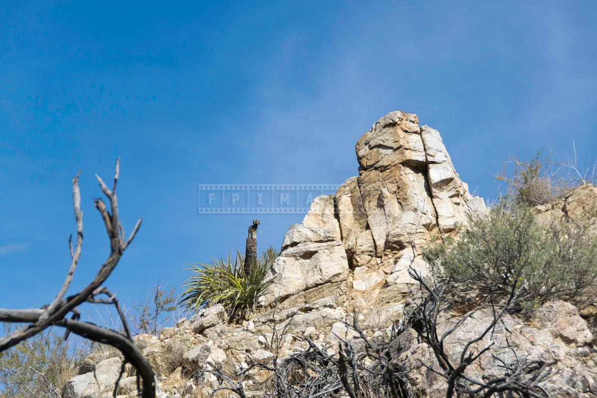 Rocks towering above the hike