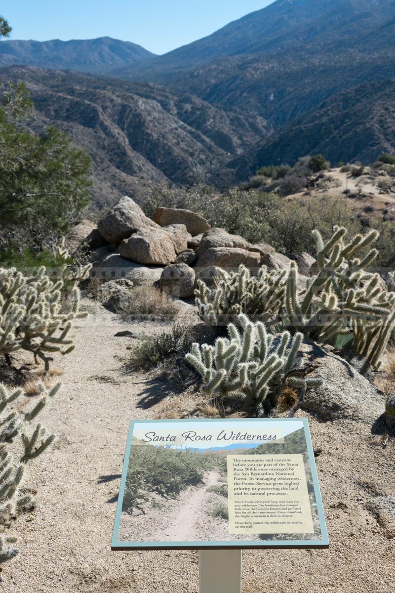 Display about Santa Rosa wilderness