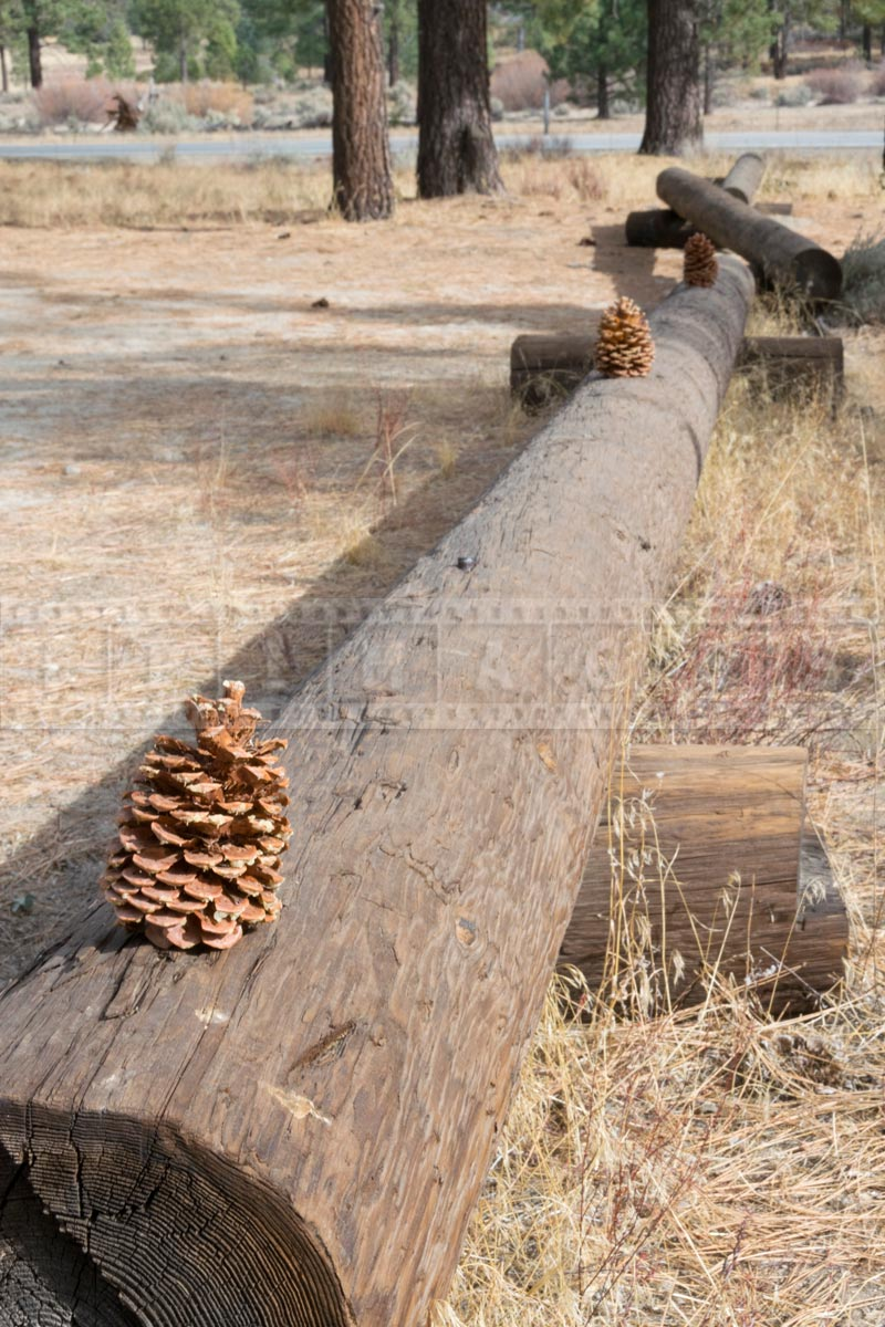 Logs marking parking lot of Ramona trail