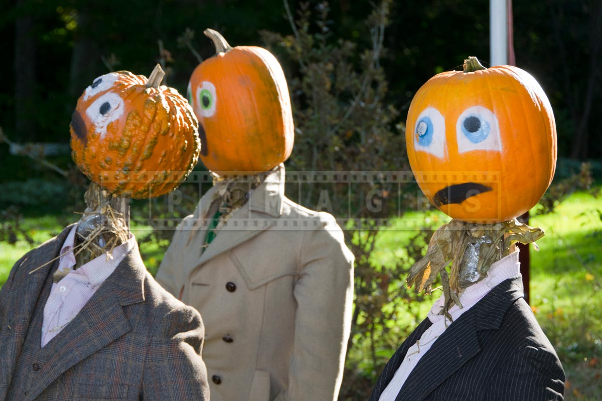 Visit Kentville Ns And See Amazing Pumpkin People