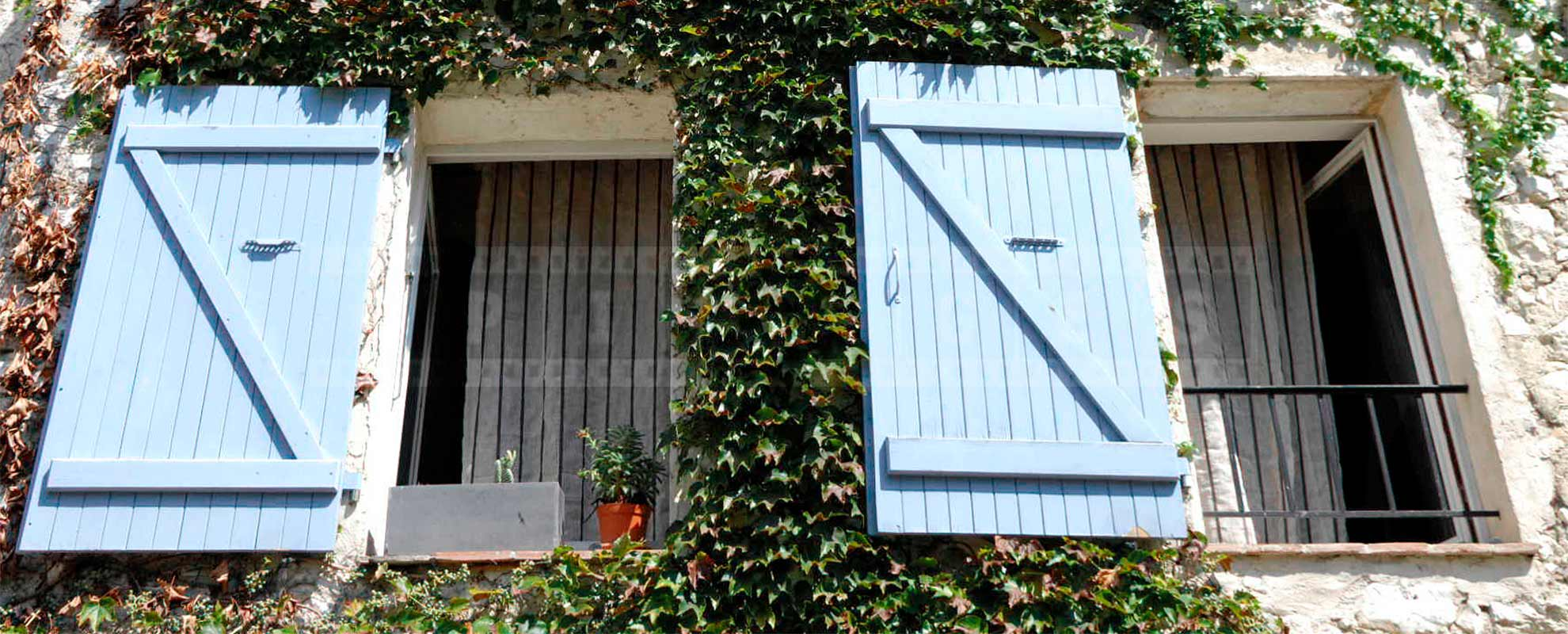 French style windows with blue shutters and green vine