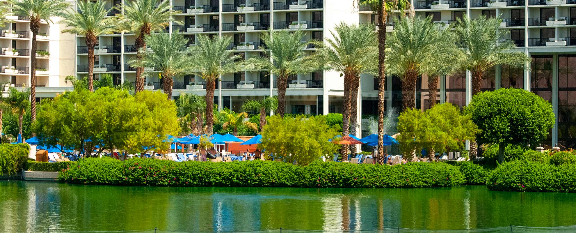 Bright Blue Umbrellas and Tall Palm Trees, beautiful grounds at JW Marriott